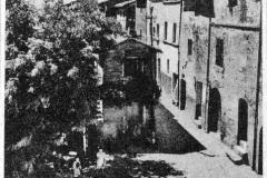 122041-montecchio d.p._7-1966 arno