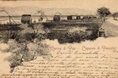 1656marina di pisa (10)