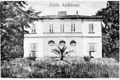 458930-villa antinori