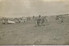 4839pisa 1918-1950 (147)