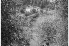 10561982 - scena dal film la notte di san lorenzo  sceneggiatura e regia dei fratelli taviani . (copia)