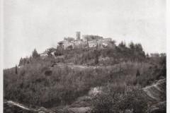 1428castello di montebicchieri